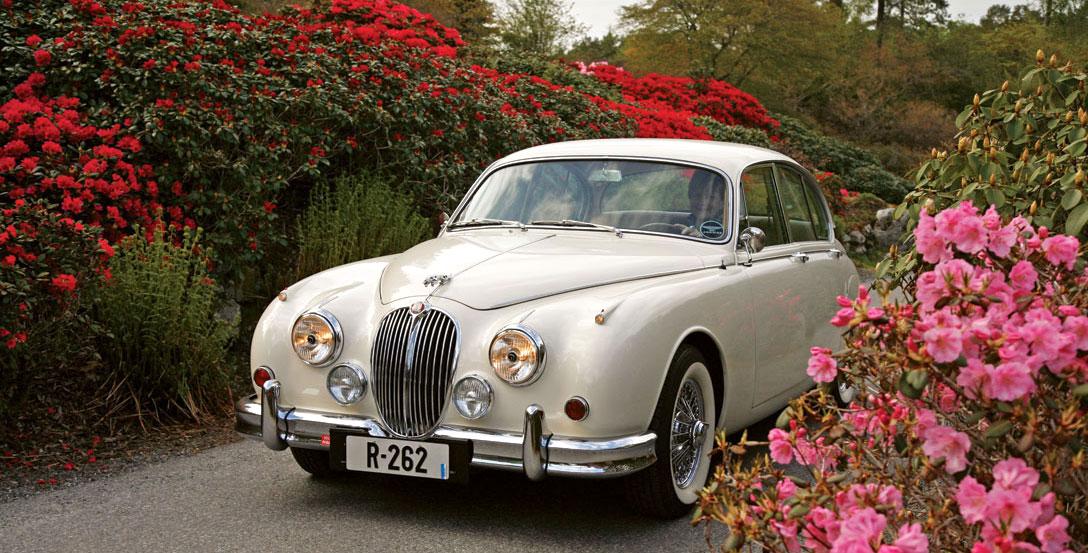 Mark 2 er selve inkarnasjonen på Jaguar-merket for en stor gruppe ivrige samlere.
